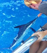 Tenerife Holiday Charter Fishing